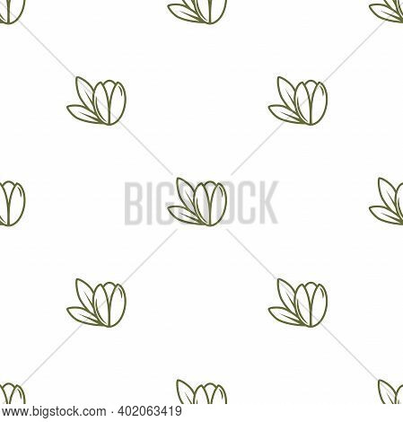 Argan Nut Green Seamless Pattern On White Background. Beauty And Cosmetics Oil. Cosmetic Ingredient.