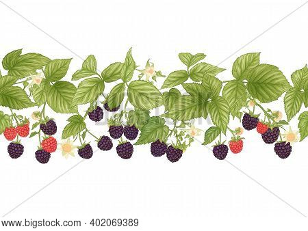 Blackberry. Ripe Berries On Branch. Seamless Pattern, Background. Graphic Drawing, Engraving Style.