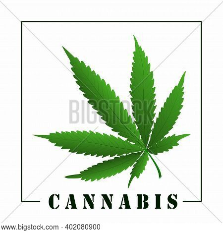 Marihuana Leaf And Cannabis Signature. Design Element. Vector Illustration.