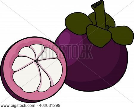 Set Mangosteen Fruit On A White Background. Whole, Sliced And Halved Mangosteen Graphics. Vector Ill