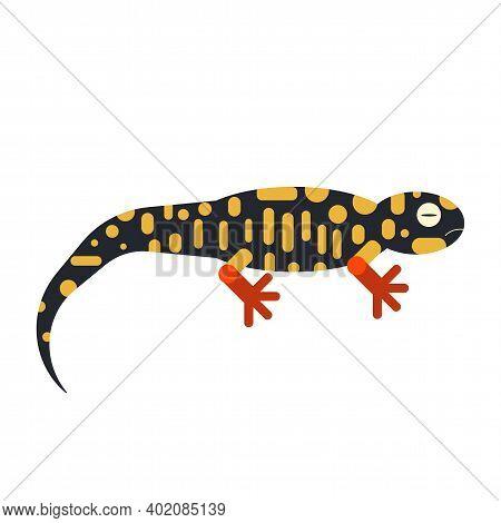 Geometric Stylized Salamander Icon In Flat Design