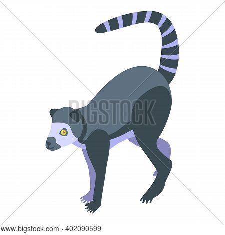Jungle Lemur Icon. Isometric Of Jungle Lemur Vector Icon For Web Design Isolated On White Background