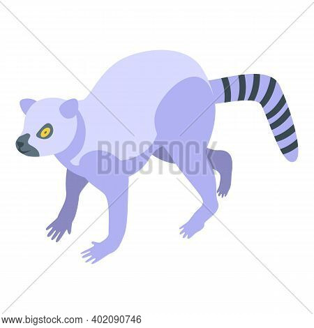 South Island Lemur Icon. Isometric Of South Island Lemur Vector Icon For Web Design Isolated On Whit