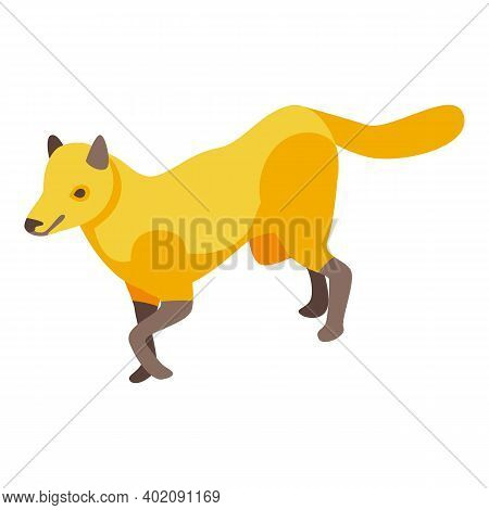 Savannah Fox Icon. Isometric Of Savannah Fox Vector Icon For Web Design Isolated On White Background