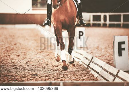 The Horse And Rider Training To Complete The Dressage Route In Cloudy Weather. Equestrian Sports. Ho
