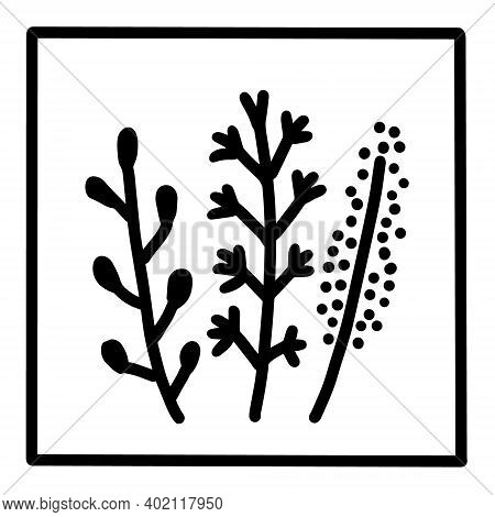 Herbs Hand Drawn Vector Icon Doodle Logo In Cartoon Style Black White Contrast