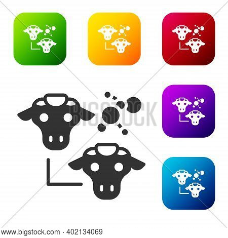 Black Cloning Icon Isolated On White Background. Genetic Engineering Concept. Set Icons In Color Squ