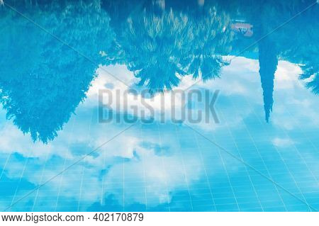 Green Palm Trees Reflexion In A Water With Azure Water