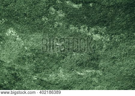Ancient Sea Weed Granite Stone Surface Of Cave For Interior