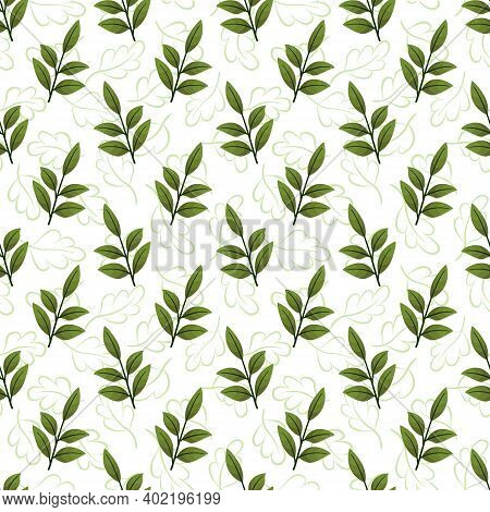 Vector Seamless Pattern With Green Foliate Twigs; For Wrapping Paper, Packaging, Posters, Banners.