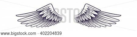 Sketch Angel Wings. Flying Hand Drawn Wing, Feathers Decoration Of Heaven Bird. Logo Or Tattoo Desig