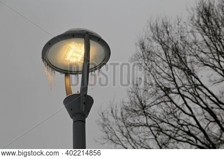 Glowing Led Lamp Covered In Icicles On Winter Trees Background. Electric Lighting At Evening, Energy