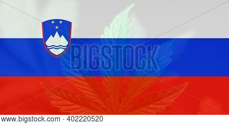 Cannabis Legalization In The Slovenia. Medical Cannabis In The Slovenia. Weed Decriminalization In S