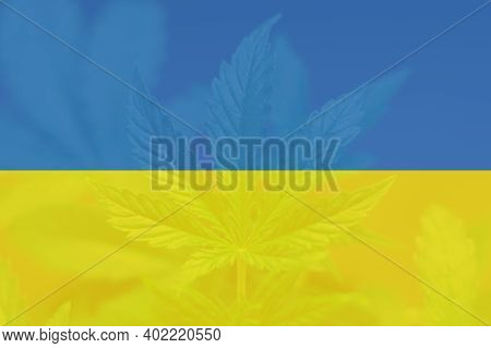 Cannabis Legalization In The Ukraine. Medical Cannabis In The Ukraine. Weed Decriminalization In Ukr