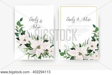 Luxury Winter Season Wedding Floral  Invite Invitation Card Design. Ivory White Poinsettia Flower, C