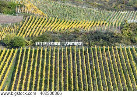 Trittenheim, Germany - November 7, 2020: Vineyard With Name Trittenheimer Apotheke In Sunset After H