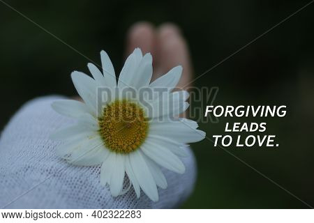 Inspirational Quote - Forgive Leads To Love. On Floral Background Of White Daisy Flower Blossom In H