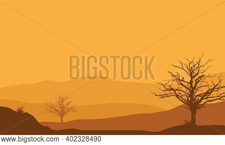 Beautiful Views In The Afternoon As The Sun Goes Down. Vector Illustration