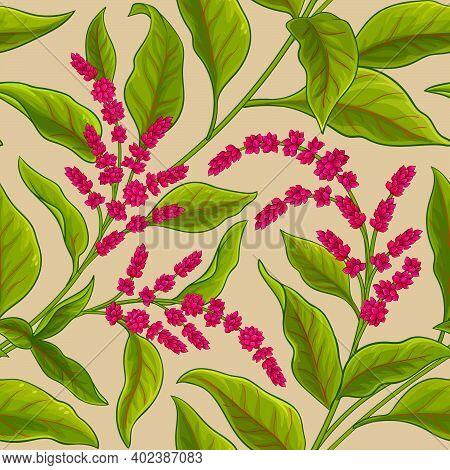 Amaranth Plant Vector Pattern On Color Background