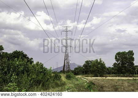 Electricity Pole With Silhouette Sunset Sky, Electricity Pylon With Shadow Of Tree In Dawn Time, Ele