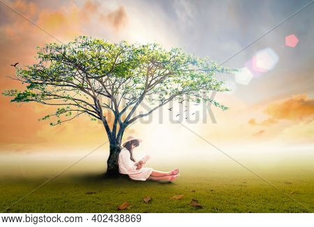 Read A Book Day Concept: Asian Girl Reading Fantastic Book Under Big Tree In Autumn Sunset Backgroun