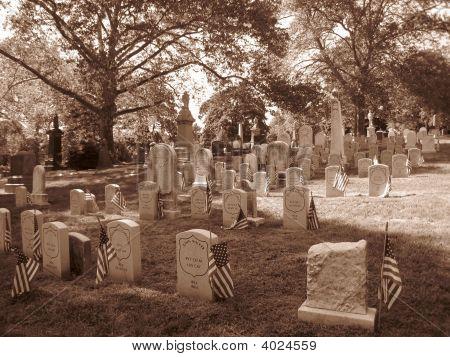 Cemetery In Brooklyn - Civil War Gravestones -Sepia