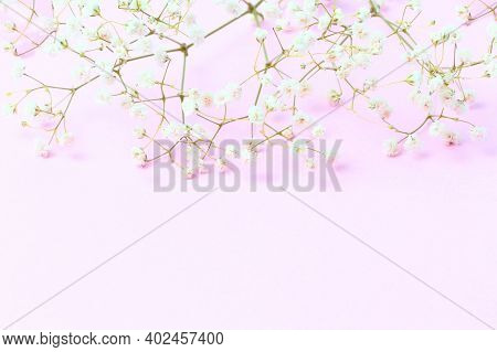 Spring Flowers Composition. Gypsophila Flowers On Pink Pastel Background. Flat Lay, Top View, Copy S