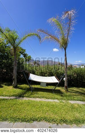 White Hammock Hanging From Two Trees In A Garden