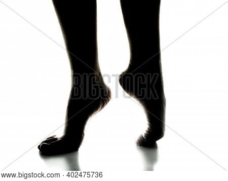 Silhouette Of Two Women's Elegant Bare Feet On A White Background. One Foot Stands On Tiptoe While T