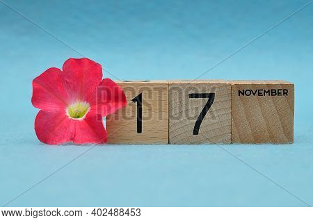 17 November On Wooden Blocks With A Petunia On A Blue Background
