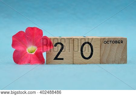 20 October On Wooden Blocks With A Petunia On A Blue Background