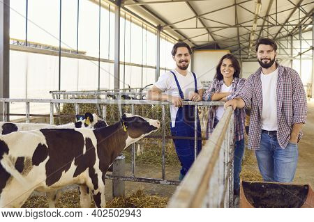 Group Of Happy Farm Workers Standing Near Cage With Calves In Barn On Livestock Farm