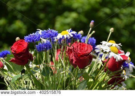 Bouquet Beautiful  Sunlit Summer Flowers Close Up
