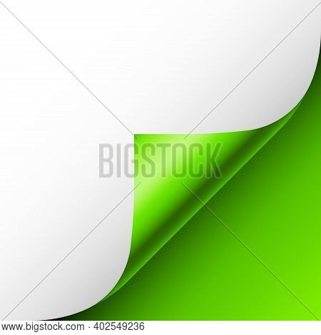 Green Paper Curl. Curled Page Corner With Shadow. Blank Sheet Of Paper. Colorful Shiny Foil. Design