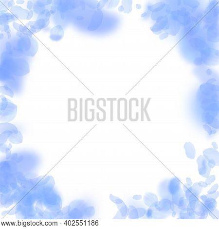 Dark Blue Flower Petals Falling Down. Bizarre Romantic Flowers Vignette. Flying Petal On White Squar