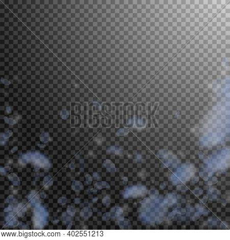 Light Blue Flower Petals Falling Down. Elegant Romantic Flowers Falling Rain. Flying Petal On Transp