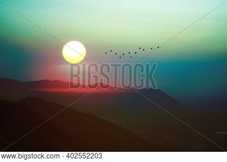 Sunrise On Morning Sky Over Green Mountain And Silhouette Bird Flying On Rainbow Sky