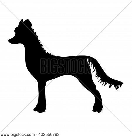 Chinese-crested Dog On White Background. Black Illustration.  Vector.
