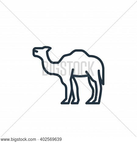 camel icon isolated on white background. camel icon thin line outline linear camel symbol for logo,