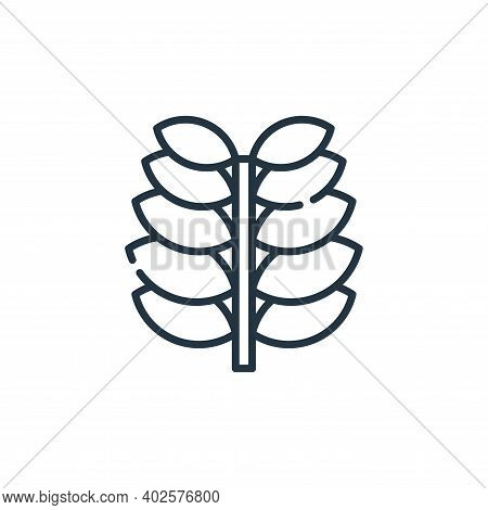 plant icon isolated on white background. plant icon thin line outline linear plant symbol for logo,