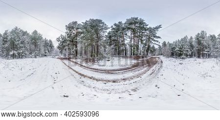 Winter Full Spherical Hdri Panorama 360 Degrees Angle View On Dirt Road In A Snowy Pinery Forest Wit
