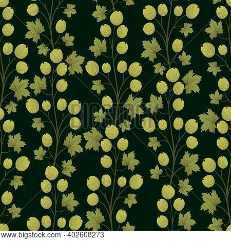 Vector Seamless Pattern With Gooseberry; Vertical Branches On Dark Green Background; For Wrapping Pa