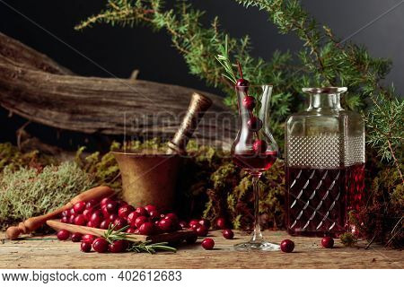 Cranberries And Cranberry Liquor On An Old Wooden Table. In The Background Moss, Juniper Branch, And