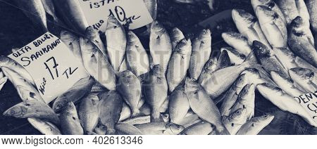 Raw Wet Bluefish With Price Tag At Fish Market In Istanbul, Turkey. Black And White Retro Toned Imag