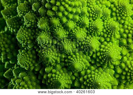 Romanesco broccoli cabbage marco. Nature fractal surface with spital pattern.