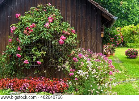 Landscape Design With Flowerbed At Residential House, Nice Landscaping Home Garden, Wooden Wall Over