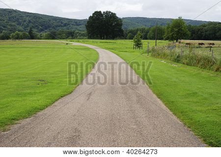 Track In Countryside. Sussex. England