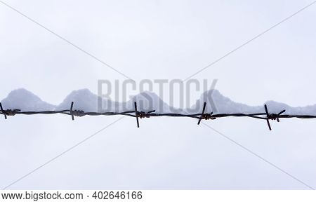 Barbed Wire In Winter Under The Snow On The Background Of The White Winter Sky. Barbed Wire Minimal