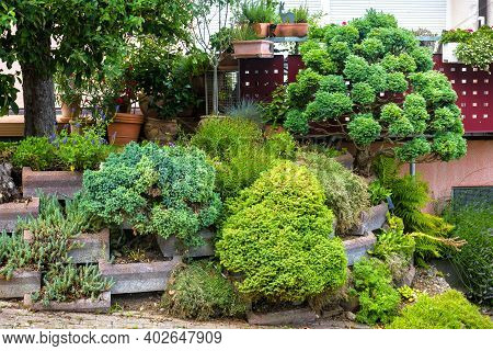 Landscape Design With Stones, Plants And Flowers At Residential House, Nice Landscaping Home Garden.