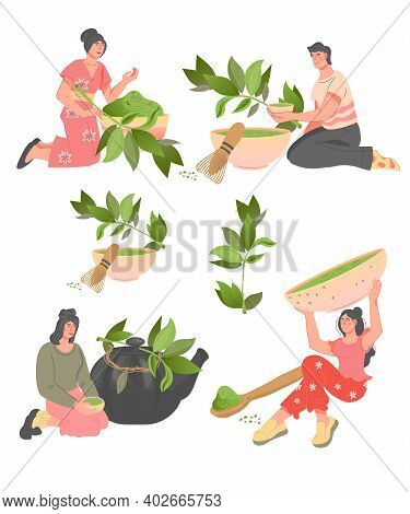 Set Of People Characters With Green Tea Leaves And Utensils For Drink Brewing, Flat Vector Illustrat